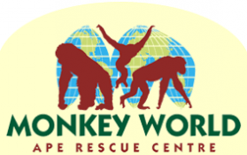 Monkey World at Easter
